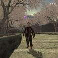 桜舞い散る時