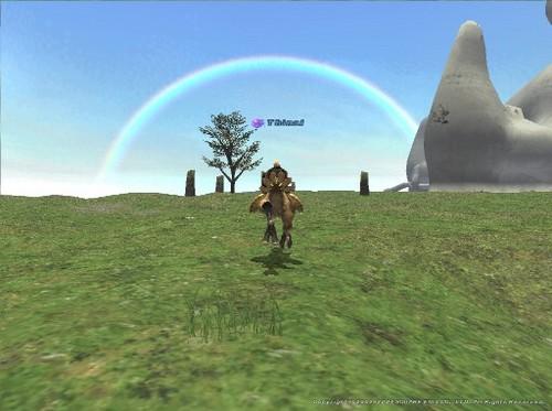 虹に向って